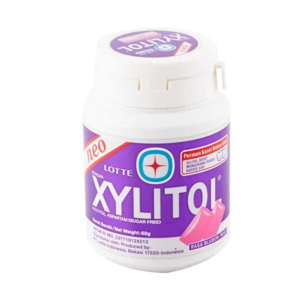 Neo lotte xylitol rasa bluberi mint 60g